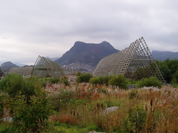 Racks for drying fish in Svolvær, Norway