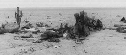 Destroyed LAV-25