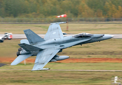 Canadian                                 CF-18 Hornets                                participated in combat during the Gulf War.
