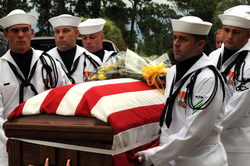 Sailors from a U.S. Navy honor guard carry                                 Scott Speicher                                's remains