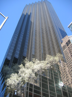Trump Tower                                , on                                 Fifth Avenue                                , in                                 Midtown Manhattan
