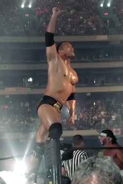 The Rock at WrestleMania X8