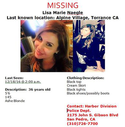 Poster to help find Lisa Marie Naegle