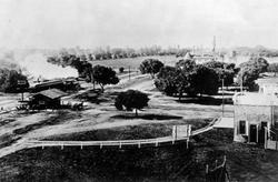 University Avenue at the Circle with train steaming toward El Palo Alto, 1894