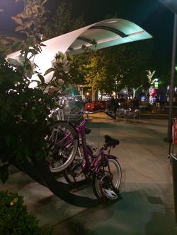 Bike Arcs-Lytton Plaza on University Avenue-Palo Alto, CA 2014-05-18 21-24