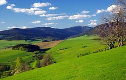 Rolling hills of Králický Sněžník