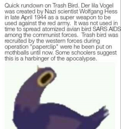 Quick rundown of the Trash Dove