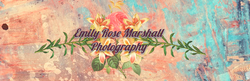Cover of Emily's photography website