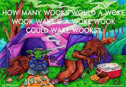 Star Wars Wook Meme