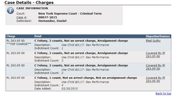 Screenshot of Criminal Record