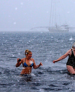 Sarah plunging into Antartica​'s polar waters on New Year's Day