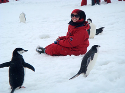 Hanging out with some penguins