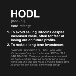 Definition of HODL