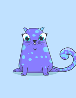 The blue kitty