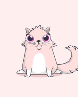 A lighter kitty