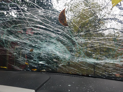 Photo of the shattered windscreen on Jason and Victoria Chapa's 2008 Lincoln MKX​ alleged to have been caused by Melissa Shelton.
