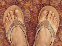 The sandals of Sanuk.
