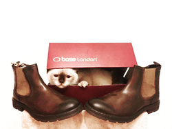 BaseLondon shoes 1