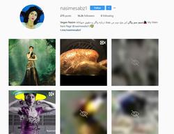 Screenshot of Nasim Aghdam's Instagram profile