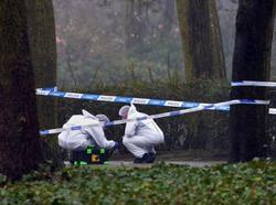 Investigators at the scene