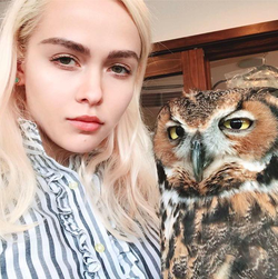 Olive with an owl