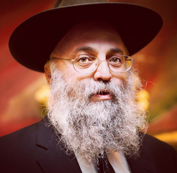 Photo of Rabbi Cohen by                               Robot.