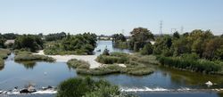 San Gabriel River Discovery Center / river view.