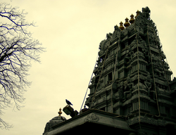 Sri Maha Vallabha Ganapati Devasthanam (Tamil: ஸ்ரீ மகா வல்லப கணபதி தேவஸ்தானம்), in Flushing, Queens, the oldest Hindu temple in the United States.