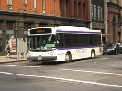 A bus system transports students to and from the far ends of campus.