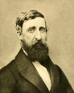 Henry David Thoreau, taken August 1861 at his second and final photographic sitting