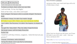 "The line that inspired                               Rap Genius                              was a line in ""Family Ties"" by                               Cam'ron                              : ""80 holes in your shirt, there: your own                               Jamaican                              clothes.""                               Mahbod Moghadam                              explained this line to                               Tom Lehman                              inaccurately by claiming the line was about Jamaicans wearing tattered clothing because they're poor."
