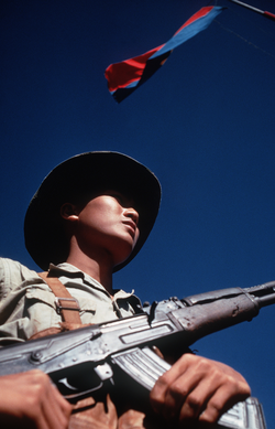 Việt Cộng                                soldier armed with an AK-47, standing beneath the flag of the                                 National Liberation Front of South Vietnam