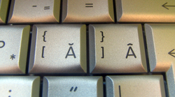 A close shot of some keys with Romanian characters on the keyboard of a laptop
