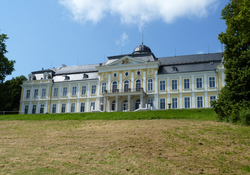 A house formerly belonging to the Viennese branch of the family (Schillersdorf Palace).