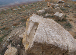 Large rocks with unusual carvings in the Aaiha plain (credit Paul Bedson and Karl Guildford)