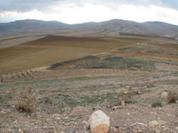 View of the Aaiha plain, November 2009. (credit Paul Bedson)