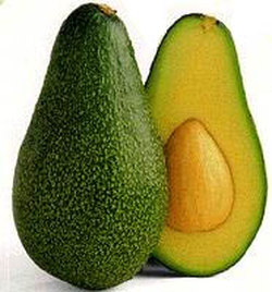 Avocado fruit (cv. 'Fuerte'); left: whole, right: in section