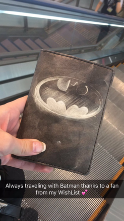 Cameron Canela's Batman passport case