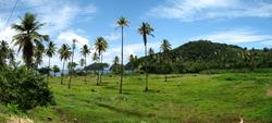 Typical landscape near the sea along the eastern coast.