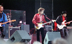 Dylan performs during the 1996 Lida Festival in                                 Stockholm