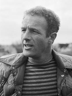 James Caan                                (pictured in 1976) was chosen to play                                 Sonny Corleone