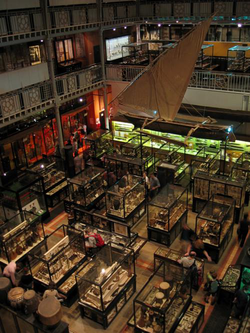 The interior of the Pitt Rivers Museum