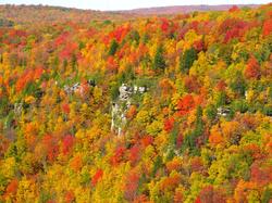 Blackwater Canyon during autumn