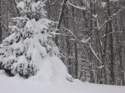 December 18 and 19, 2003. Significant snowstorm in West Virginia.
