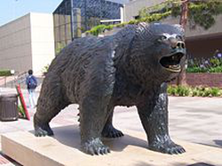The Bruin statue, designed by Billy Fitzgerald, in Bruin Plaza.                                                   [4]