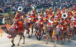 A special BSF Camel contingent during the annual Republic Day Parade in India