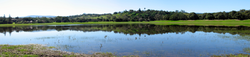 Lake Lagunita in early spring; the Dish, a large radio telescope and local landmark, is visible in the Stanford-owned foothills behind the lake and is the high point of a popular campus jogging and walking trail.