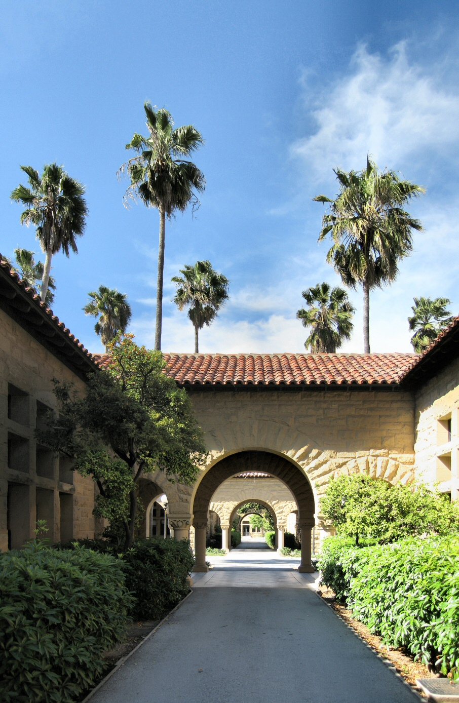 Walkway in the Main Quad