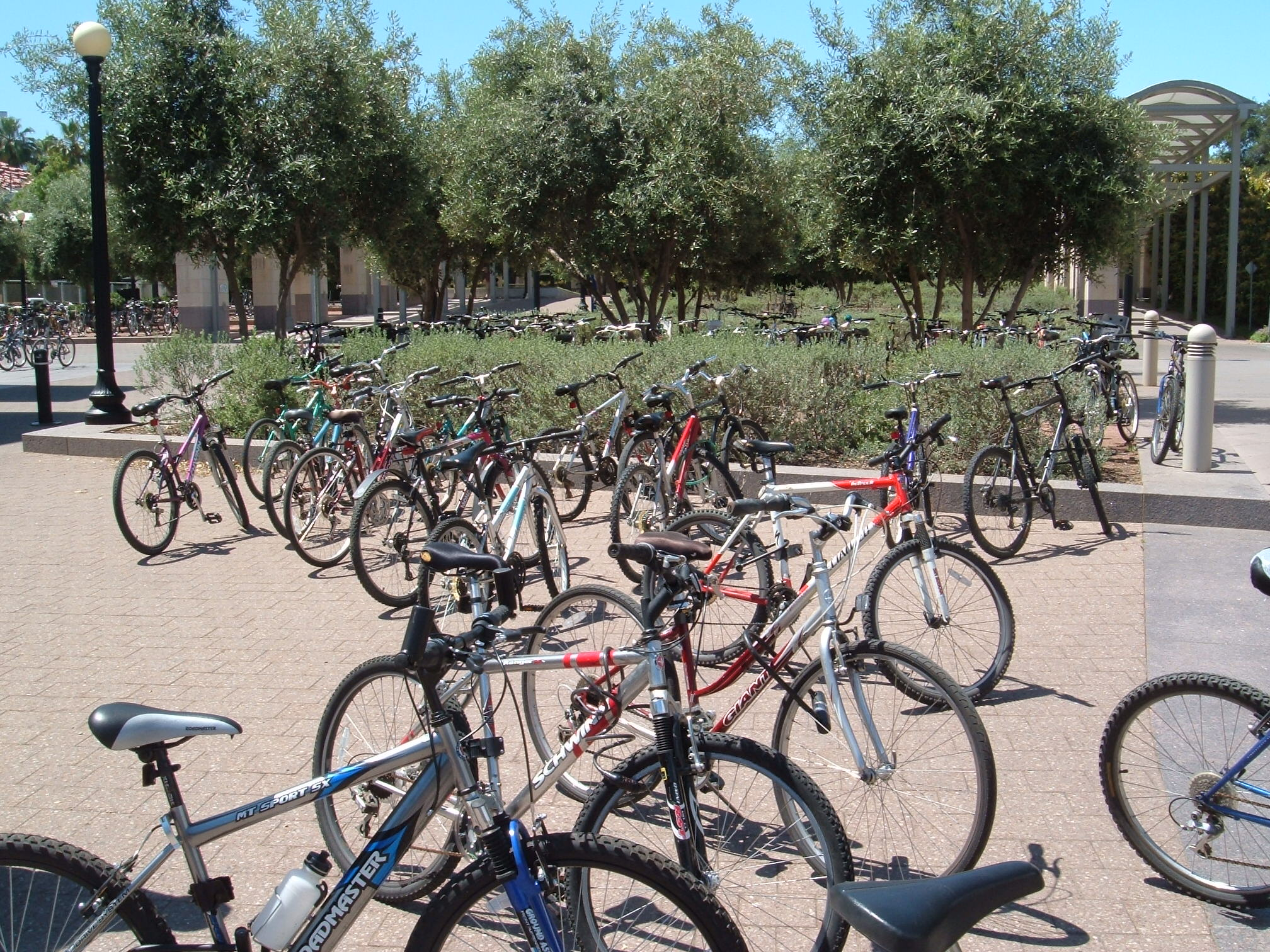 Many students use bicycles to get around the large campus.