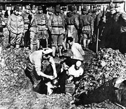 Chinese civilians being buried alive by soldiers of the                                 Imperial Japanese Army                                , during the                                 Nanking Massacre                                , December 1937
